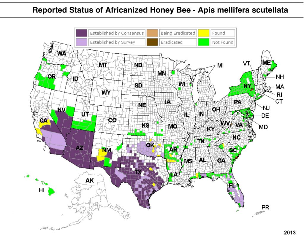 Africanized Bee Map